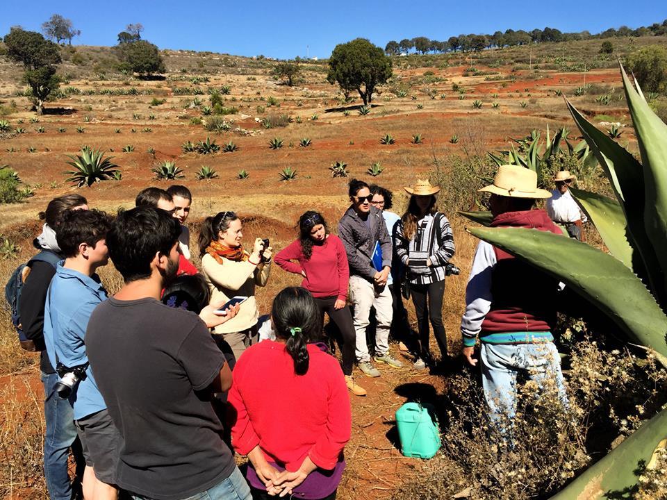rutopia conecta comunidades rurales con viajeros