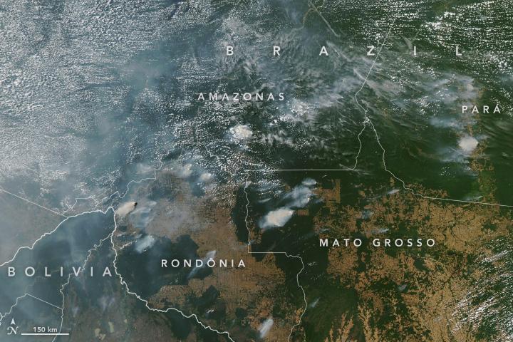 amazonas-incendio-fuego-brasil