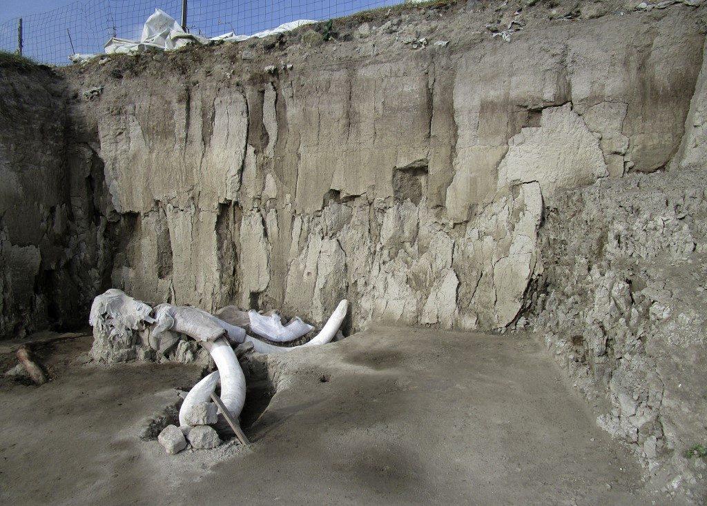 Los arqueólogos también encontraron una trampa para mamuts. Foto: AFP