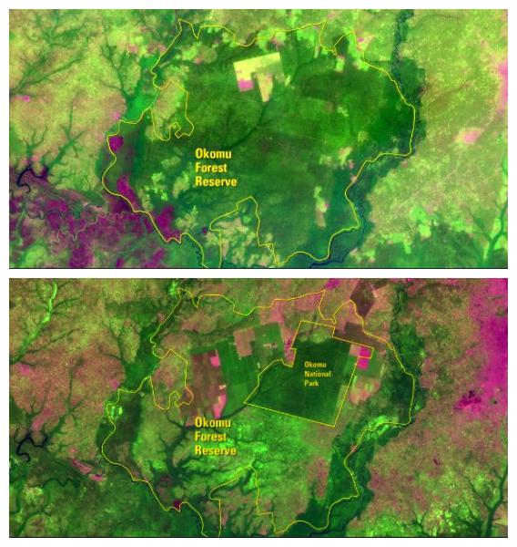 decada-2019-crisis-climatica-deforestación-nigeria-b
