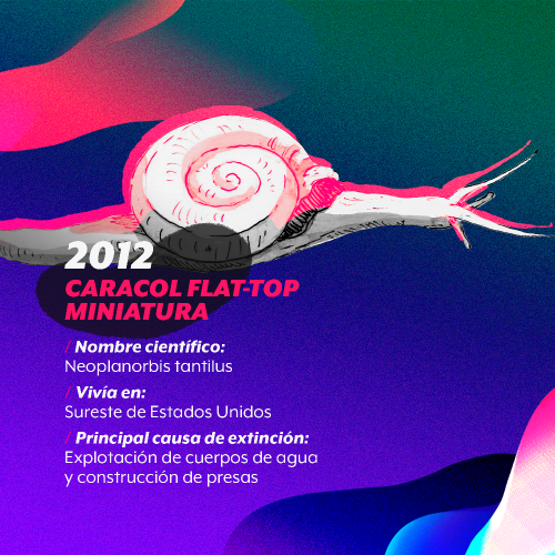 extincion-2012
