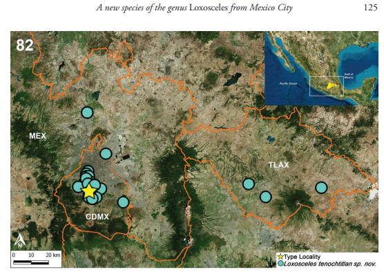 nueva-arana-violinista-mexico-picadura-loxosceles-tenochtitlan-mapa2