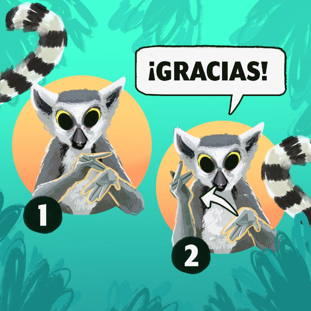 ¡Gracias! en Lengua de Señas Mexicana