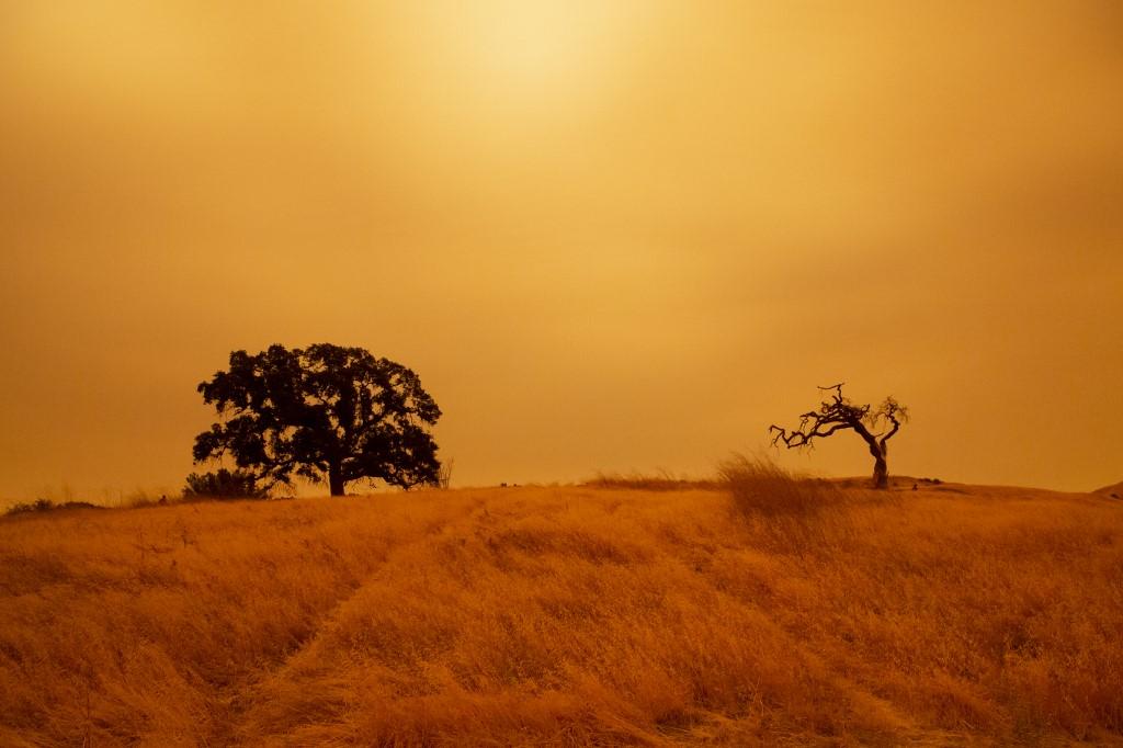 Vista de Concord, California. Foto: Brittany Hosea-Small | AFP
