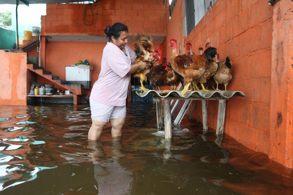 La gente rescata a sus animales en Tabasco. Foto: Carlos Canabal Obrador | Cuartoscuro