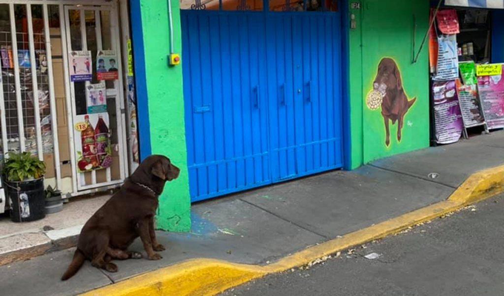 El Conchas vive en Iztapalapa. Foto: Facebook Paola Ponce