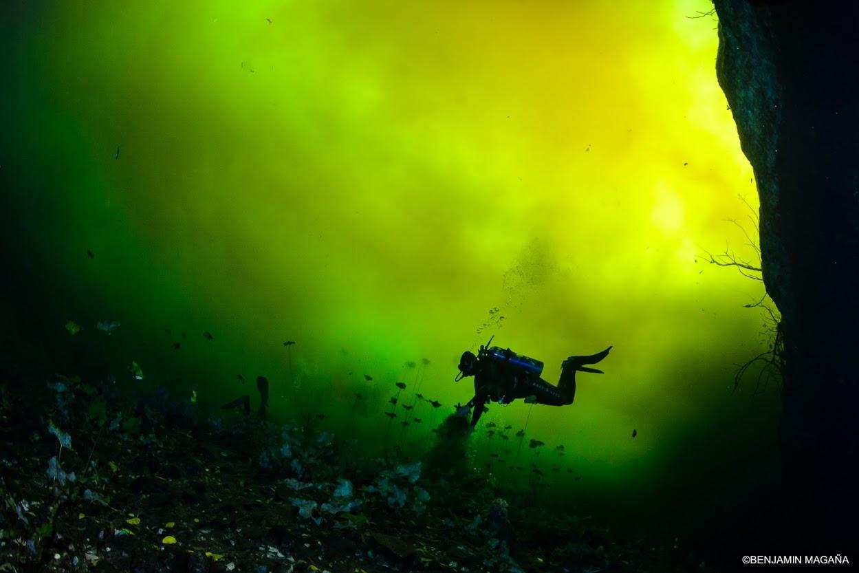Los cenotes de la península de Yucatán son lugares místicos. Foto: Benjamín Magaña, cortesía de Ecosuby