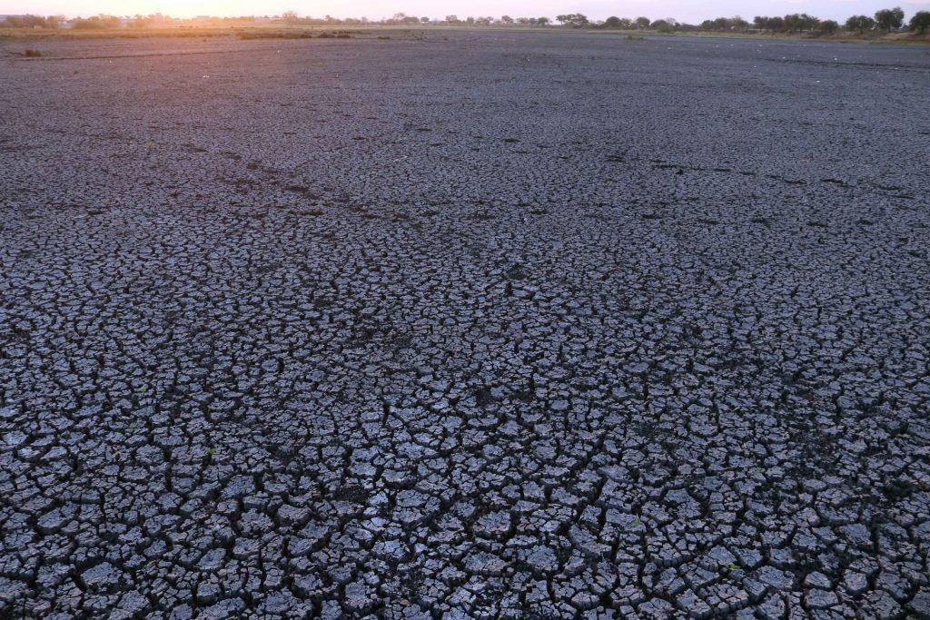 Así se ve actualmente la laguna de Axochiapan. Foto: Cuartoscuro