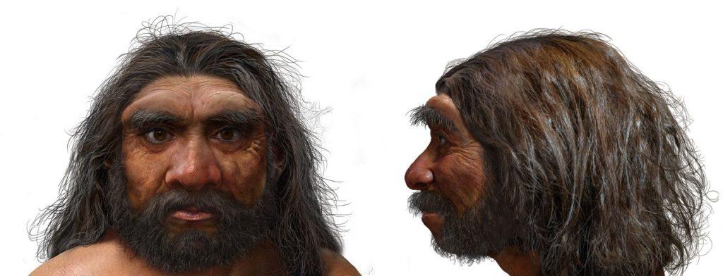 Su cabeza podía albergar un cerebro del mismo tamaño que el humano. Foto: AFP