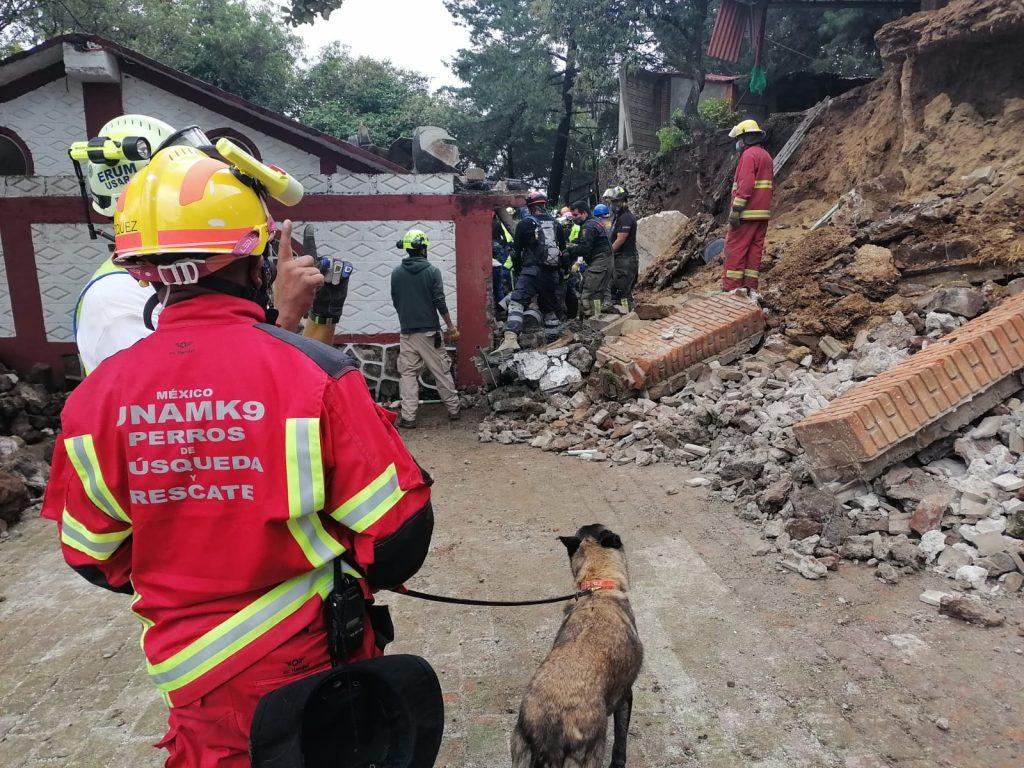 La Unidad Canina de Búsqueda y Rescate de la UNAM acudió al albergue para perros Milagros Caninos a hacer labores de rescate.